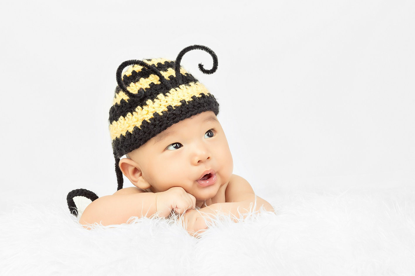 little bee lalal