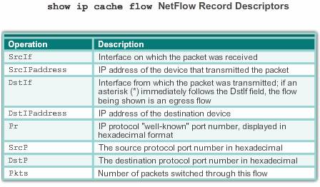 Netflow_record_descriptors